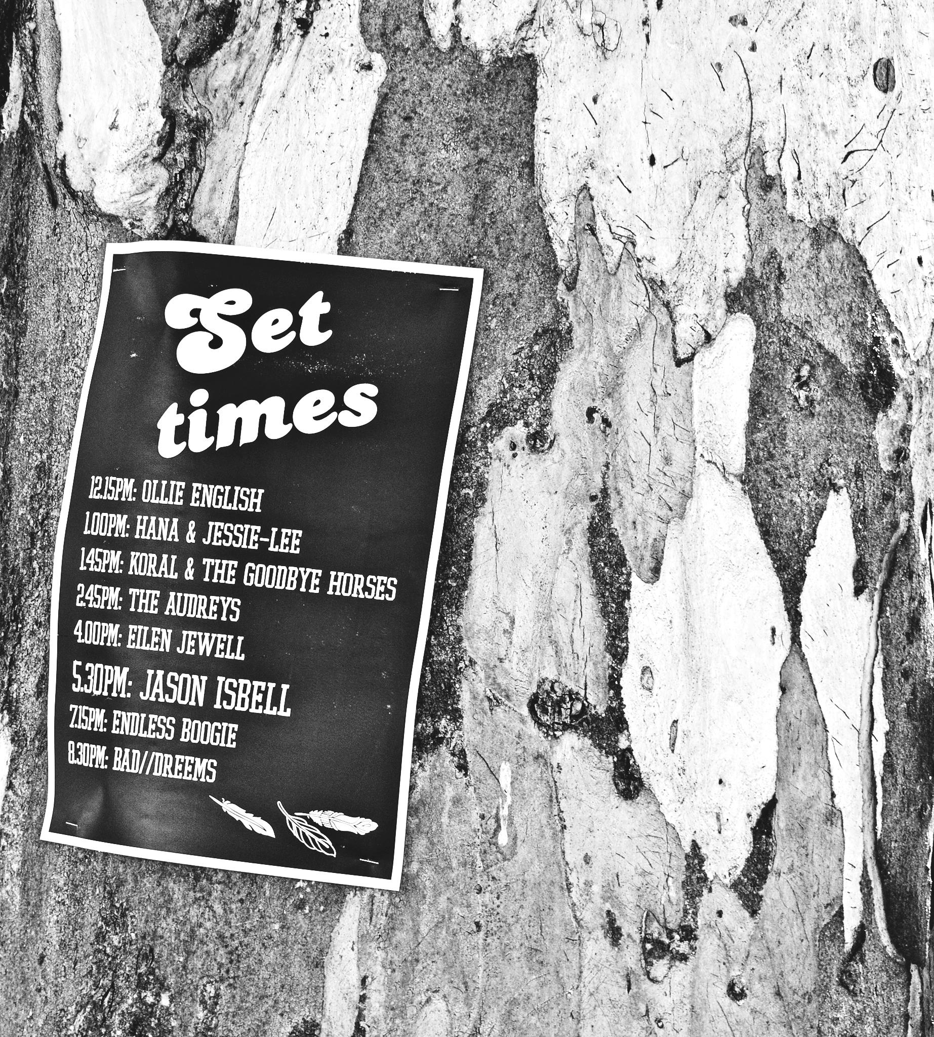 set_times_dsc_1300_fb